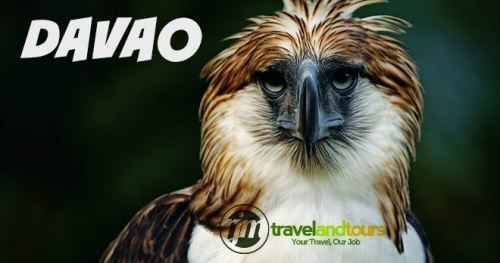 Davao Tour Package with airfare+hotel+airport transfer+davao city tour regular promo price start from Php6,900 per head. For booking just fill up the form below or you can contact us 09173127613.
