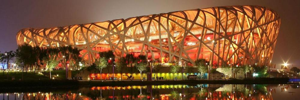 CHINA birds nest
